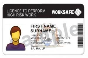 High Risk Licence card